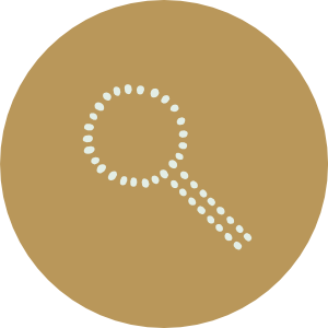 hvp-icon-2