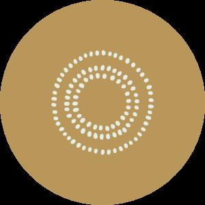 hvp-icon-3